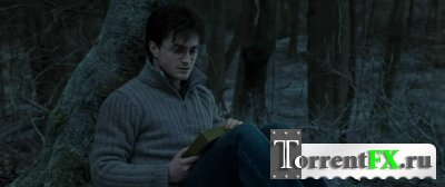 Гарри Поттер и Дары смерти: Часть 1 (2010) HDRip