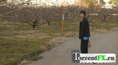 Женщина с разрезанным ртом 2 / Kuchisake-onna 2