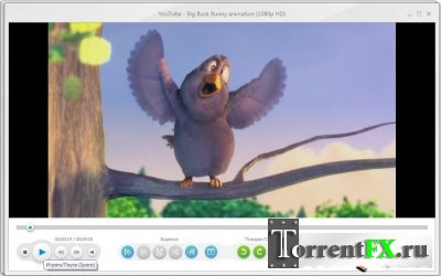 Freemake Video Converter 2.1.2.0 (2011) PC