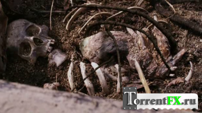 Из под земли / Mandrake (2010)