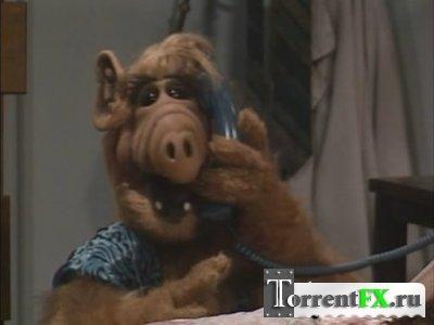 Альф (Серии 01-98 из 102) / Alf
