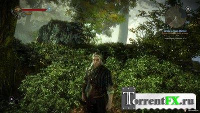 Witcher - сборка патчей (v1.001-1.003)