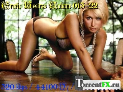 VA - Erotic Desires Volume 013-22 (2011) MP3