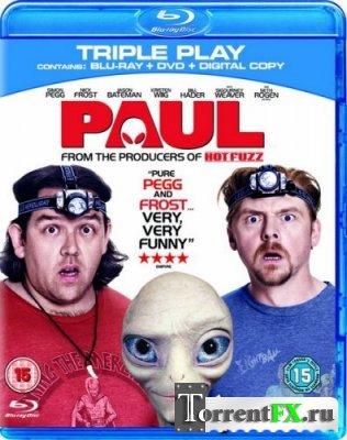 Пол: Секретный материальчик / Paul (2011) HDRip | Лицензия