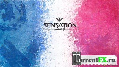 Sensation: Celebrate Life