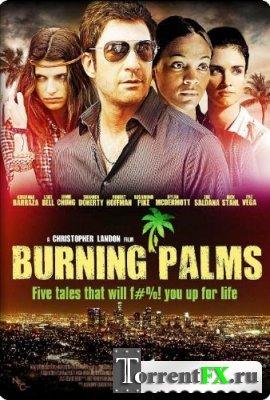 Горящие пальмы / Burning Palms