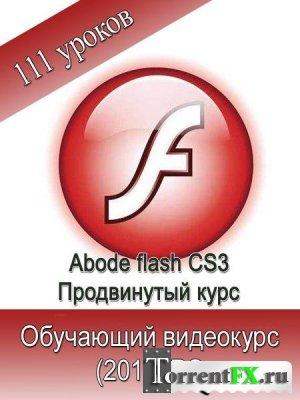Adobe Flash CS3. Продвинутый обучающий курс