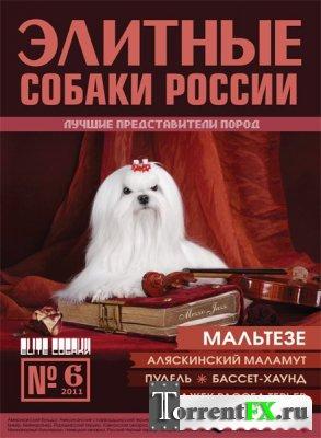 """Каталог """"Элитные собаки России"""" №6"""