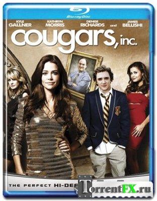 Корпорация Пума / Cougars, Inc. (2011) HDRip | Лицензия