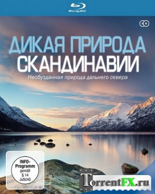 Дикая природа Скандинавии / Wildes Skandinavien / Wild Scandinavia [01-06 из 07] (2011) HDRip