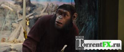 Восстание планеты обезьян / Rise of the Planet of the Apes (2011) HDRip