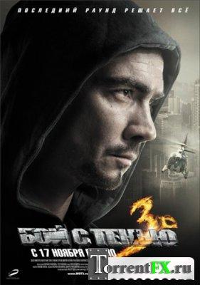 Бой с тенью 3D: Последний раунд (2011) CAMRip
