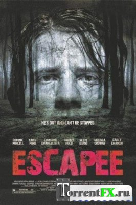 Беглец / Escapee (2011) DVDRip