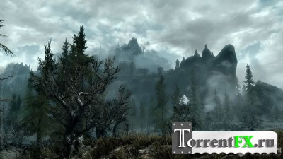 The Elder Scrolls V: Skyrim (2011) PC | RePack + online