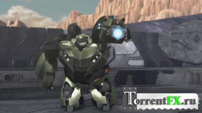 ������������: ����� / Transformers Prime Darkness Rising (2011) DVDRip