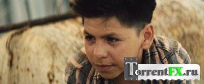 «Весёлые» каникулы / Get the Gringo (2012) DVDRip | Лицензия