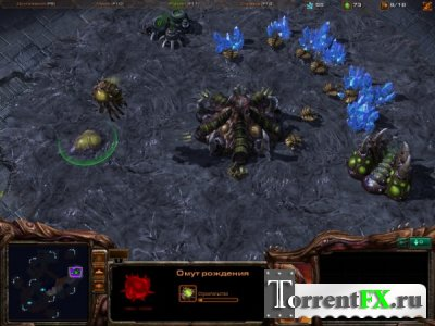 StarCraft II: Wings of Liberty (2010/PC/Русский) | RePack