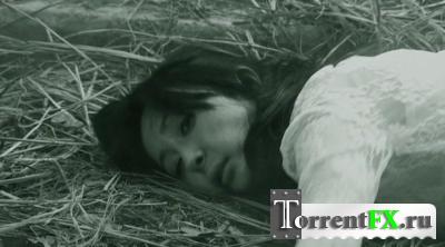 Таинственный остров / Mysterious Island (Кай Чунг Чунг) [2011, ужасы, HDRip] VO