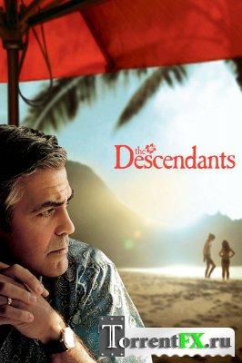 Потомки / The Descendants (2011) HDRip | Лицензия