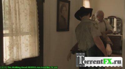 Ходячие мертвецы / The Walking Dead [S01-02] (2010-2012/WEB-DLRip) | LostFilm