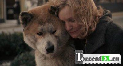 Хатико: Самый верный друг / Hachiko: A Dog's Story (2009/HDRip) от Scarabey