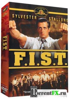 Кулак / F.I.S.T (1978) DVDRip-AVC