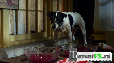 Пес-вампир / Vampire Dog (2012) HDRip