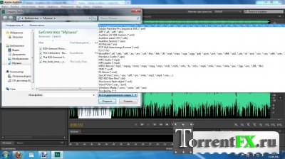 Adobe Audition CS6 5.0.2 (2012) РС