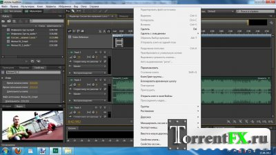 Adobe Audition CS6 5.0.2 (2012) ��