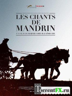 Песнь о Мандрене / Les chants de Mandrin (2011) DVDRip