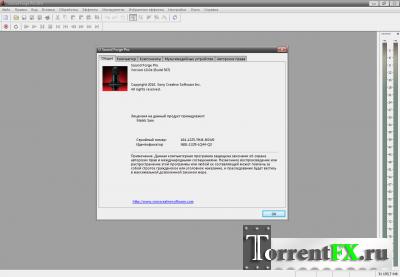 Sony Sound Forge Pro 10.0e Build 507 (2013) PC