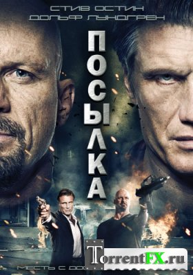 Посылка / The Package (2012) BDRip | L2