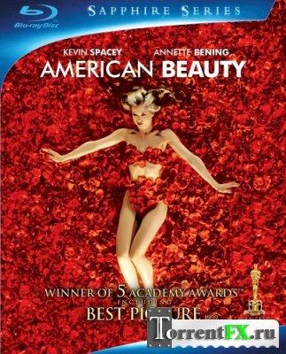 Красота по-американски / American Beauty (1999) HDRip