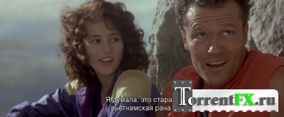 Скалолаз / Cliffhanger (1993) BDRip-AVC от NovaLan