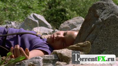 Волчье Лето / Ulvesommer (2003) DVDRip-AVC | P