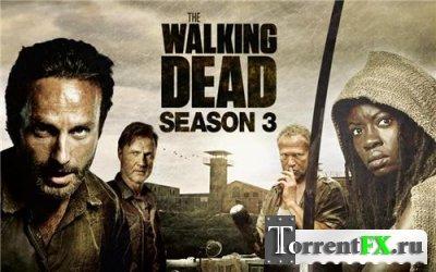 Ходячие мертвецы / The Walking Dead (2012-2013) WEB-DLRip | 3 сезон