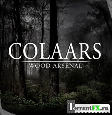 Colaars - Wood Arsenal (EP, 2012) MP3
