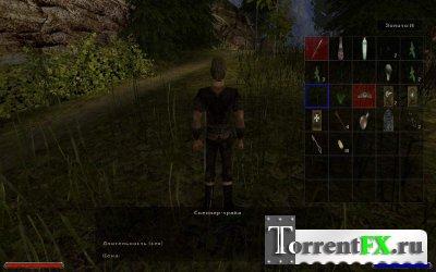 Gothic 2: Gold [v.2.6] (2004) PC