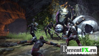 The Elder Scrolls Online (2013) PC | Beta