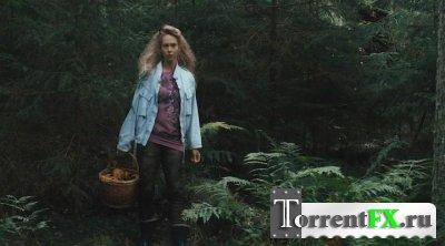 По грибы / Seenelkäik (2012) DVDRip от Cmert | L1