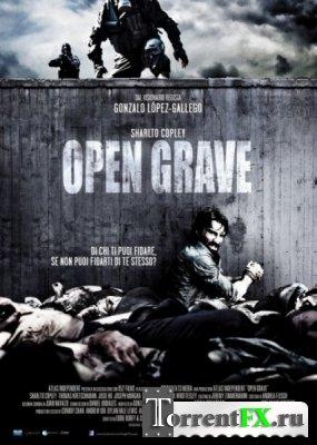Открытая могила / Open Grave (2013) HDRip