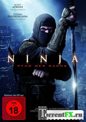 Ниндзя 2 / Ninja: Shadow of a Tear (2013) WEB-DLRip