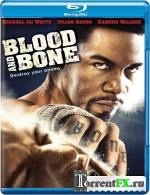 ����� � ����� / Blood and Bone (2009) BDRip 720p