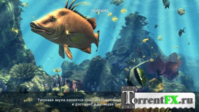 Depth Hunter 2: Deep Dive (2014) PC | RePack