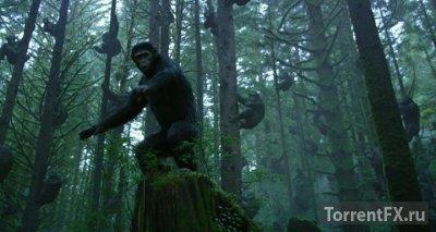 Планета обезьян: Революция (2014) WEB-DLRip | Звук с TS