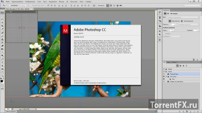 Adobe Photoshop CC 2014.2.1 (2014) PC | RePack