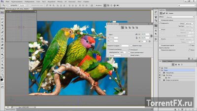 Adobe Photoshop CC 2014.2.1 (2014) PC | RePack