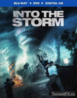 Навстречу шторму  (2014) BDRip 720p
