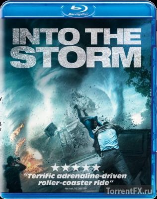 Навстречу шторму (2014) BDRip-AVC