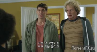 Тупой и еще тупее 2 (2014) WEBRip 720p